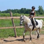 lovastábor-2013 Lovasoktatót keresünk