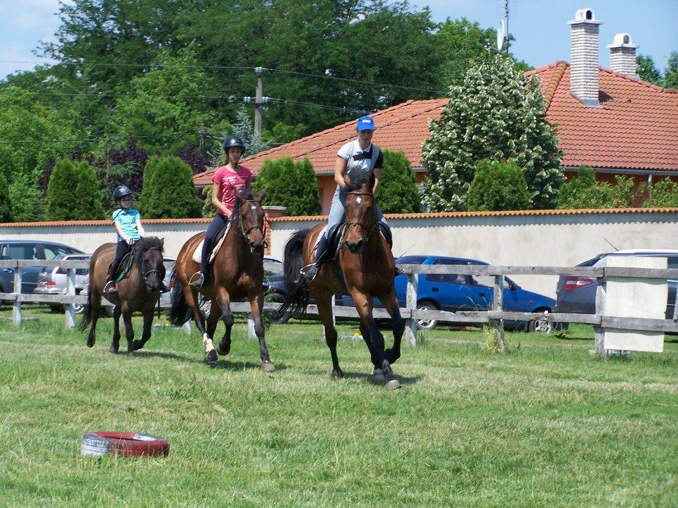 Lovas edzések iskolások részére lovagolni gyerekek Debrecen